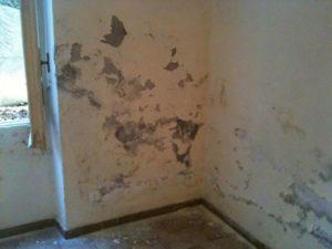 danni estetici da umidità di risalita