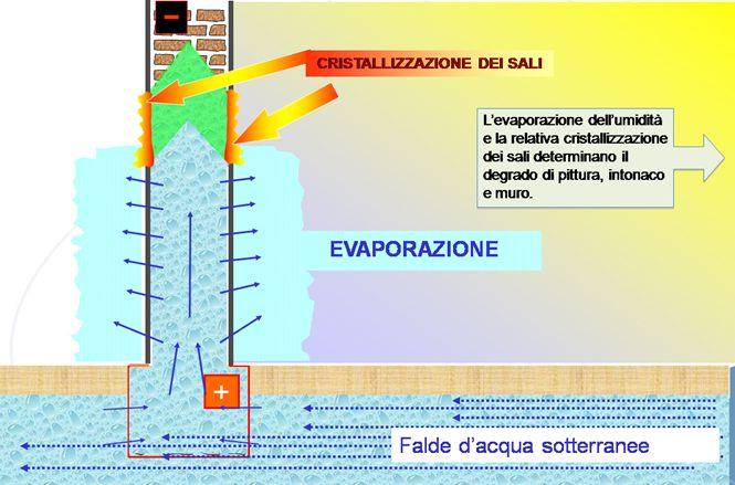 Umidit di risalita e muffa soluzioni e rimedi aquapol - Umidita in casa rimedi ...